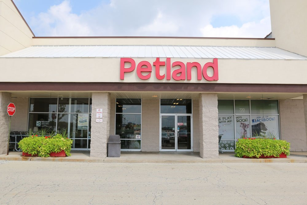 Petland puppies store and Dog Supplies